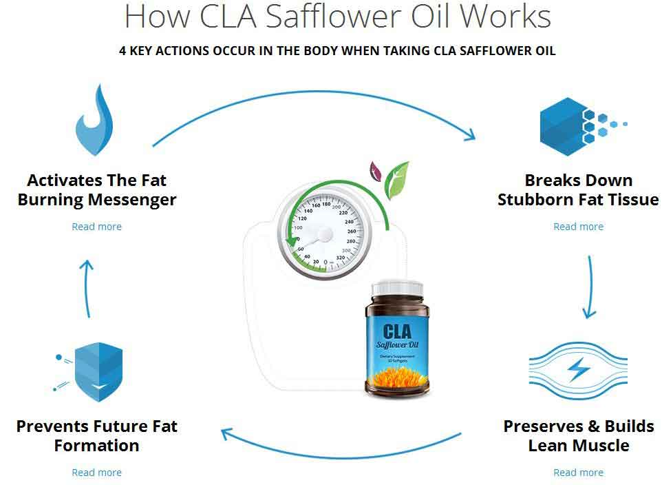 CLA Safflower Oil: Uses, Side Effects and Warnings